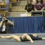 UCLA Bruins Women's Gymnastics - 2032
