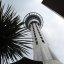 Sky tower//New Zealand