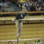 UCLA Bruins Women's Gymnastics - 1595