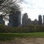 skyscrapers seen from Central Park