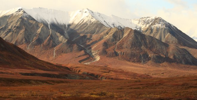 Fall colors in Denali National Park, Alaska