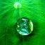 The world in a waterdrop