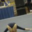 UCLA Bruins Women's Gymnastics - 1395