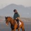 Equestrian - Horse and Rider on the wet sand beach in late evening light on Morro Strand State Beach