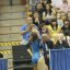UCLA Bruins Women&#039;s Gymnastics - 1077