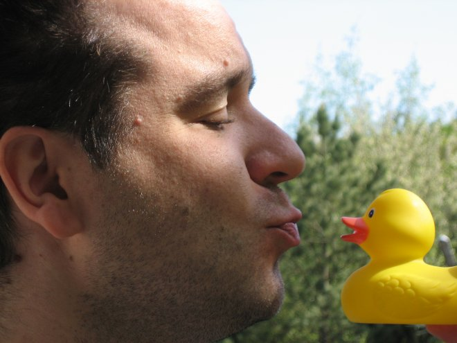 kissing duck