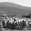Rush Hour in Irland