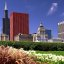 Chicago - Grant Park Flowers & Sears(Willis) Tower