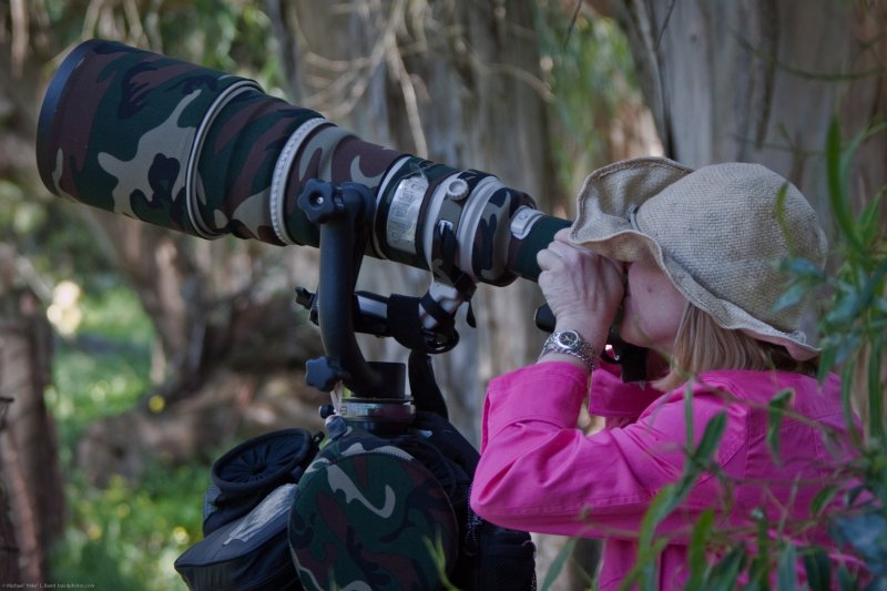 Dawn Beattie, female photographer behind a Canon 1D Mark III 600mm Gitzo Wimberley setup