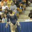 UCLA Bruins Women's Gymnastics - 2039