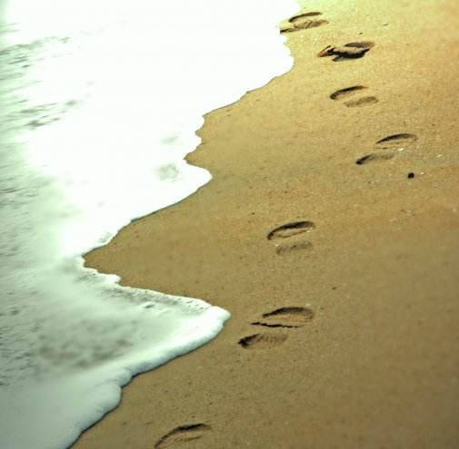 where does these footsteps lead to  ?