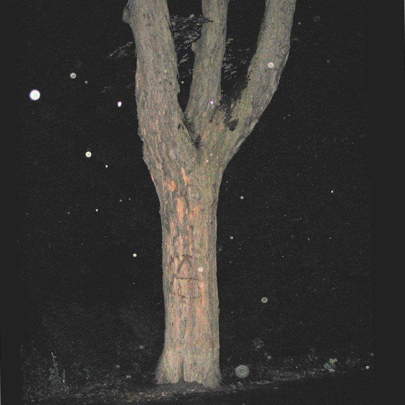 Ψ-tree with A-sign standing in monsoonal night