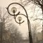 Two street lamps in a loving embrace
