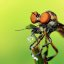 Robber Fly with Prey (Holcocephala fusca)