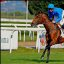 Dettori and Mastery GB won the Italian Derby Better