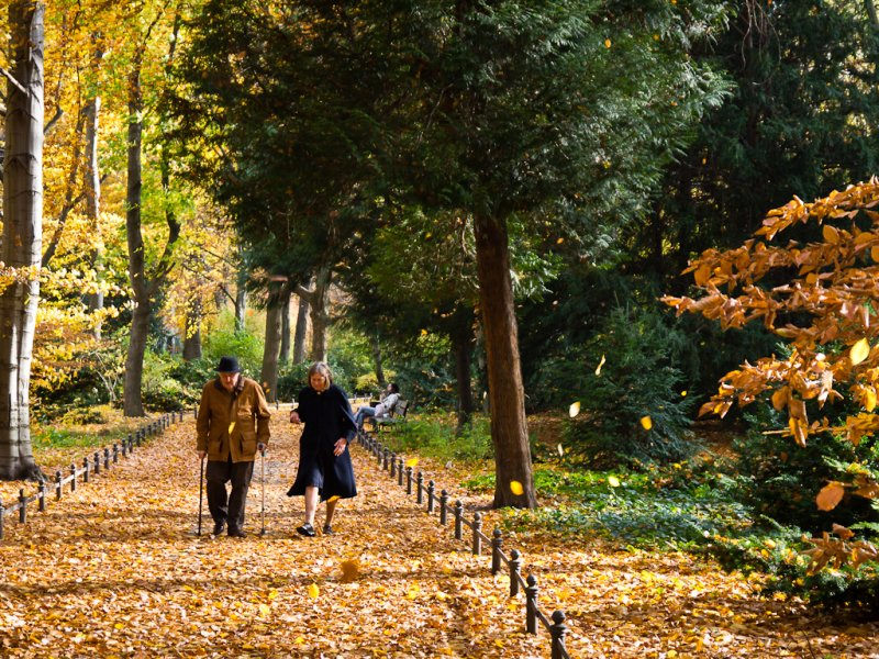 DE Landscape 08: Tiergarten Old Couple