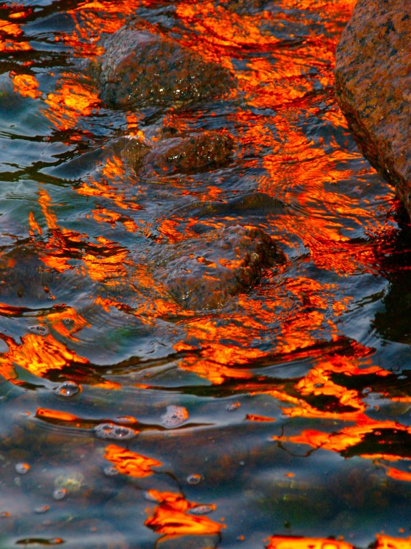 Bonfire reflections