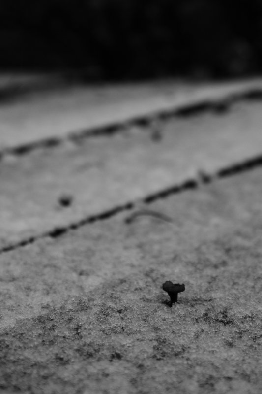 nail in a snow horizont