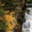 Fall colors on the side of the falls on the South Fork of Eagle River, Alaska