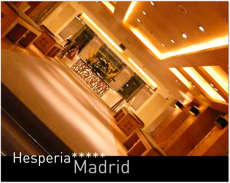 The Hesperia Madrid***** Hotel - The superb designed hallway which connects the lift, restaurants and the reception at this outstanding hotel! Superb urban setting! Excellence in the spanish capital!:)