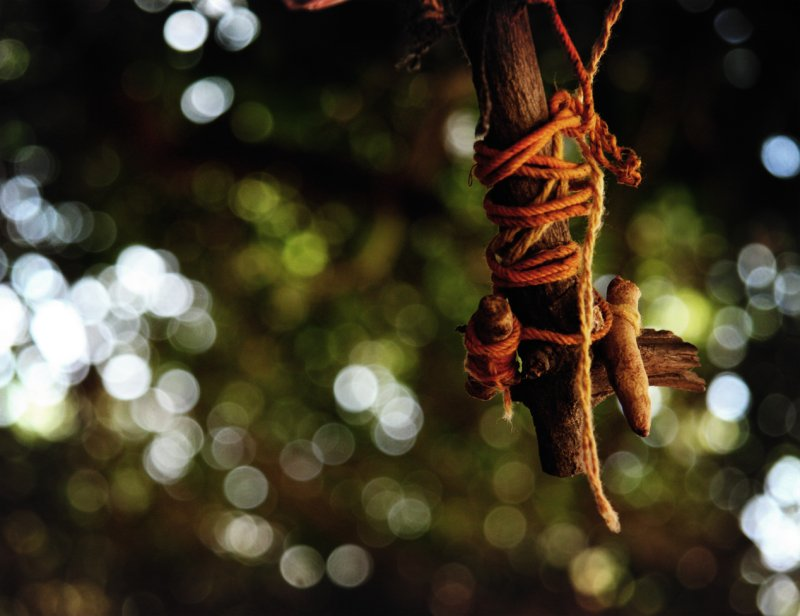 Holy threads & Sacred trees of INDIA