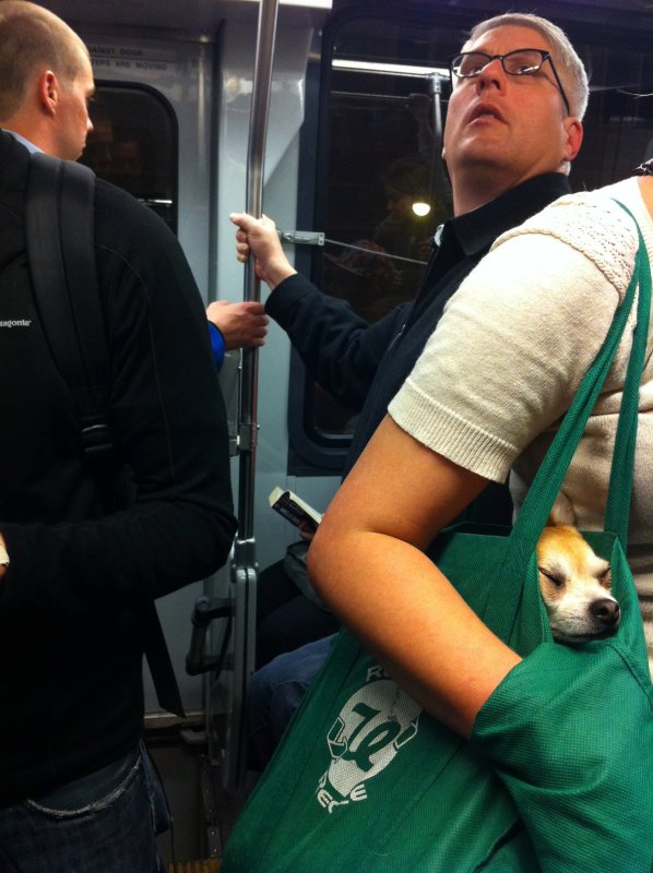 Meanwhile On Muni
