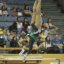 UCLA Bruins Women's Gymnastics - 1579