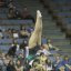 UCLA Bruins Women's Gymnastics - 1605