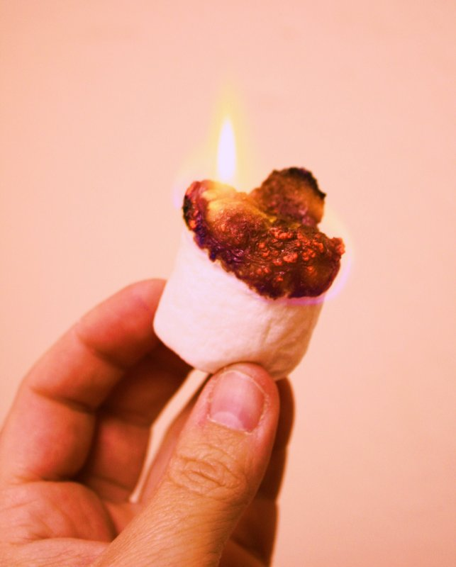 Hand Holdng Fire Toasted Marshmallow