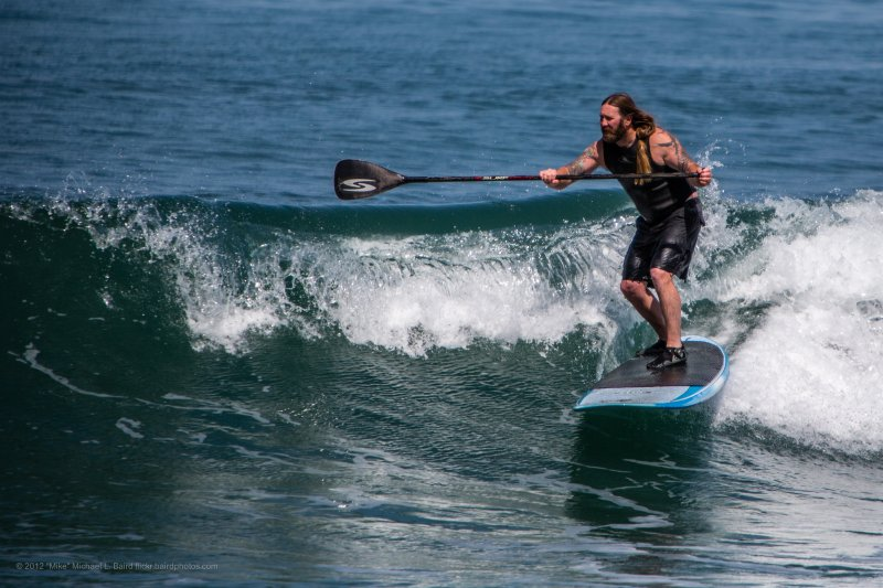 Male Stand-up Paddle (SUP) surfer with tattoos, long hair, and beard, on a blue paddle board, catching a wave on one of the nicest days of the year.