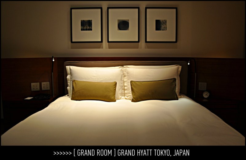 [ Italian furniture - Grand Room ] GRAND HYATT TOKYO, JAPAN