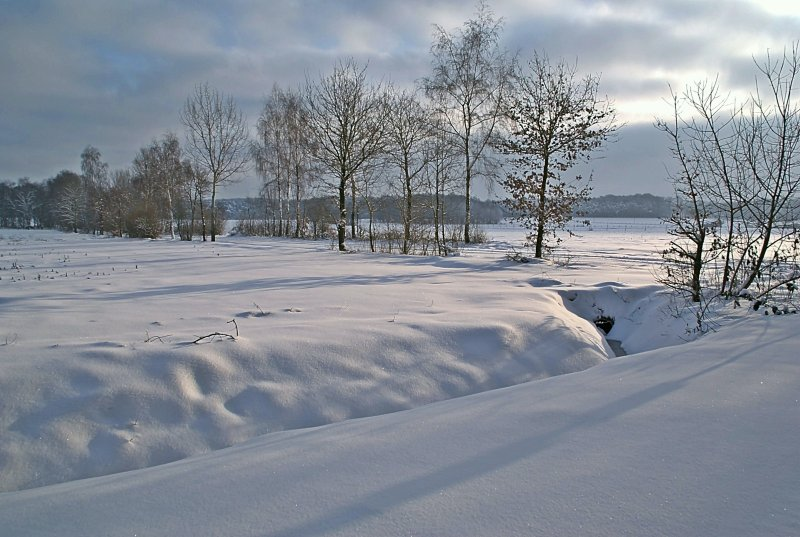 Winterimpression (2)