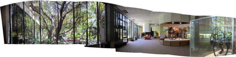 Panorama of the Page Museum showing the atrium garden