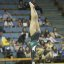 UCLA Bruins Women's Gymnastics - 1606