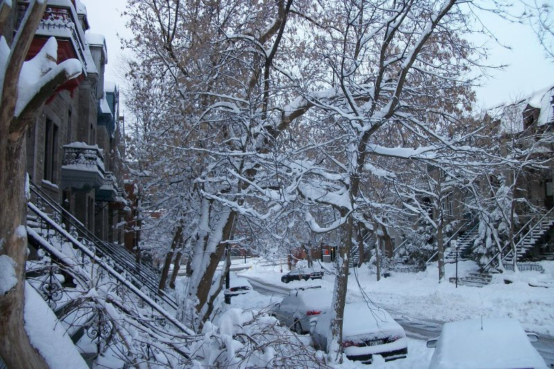 Montreal in Early Spring