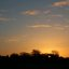 Sunrise seen from Bacton Woods