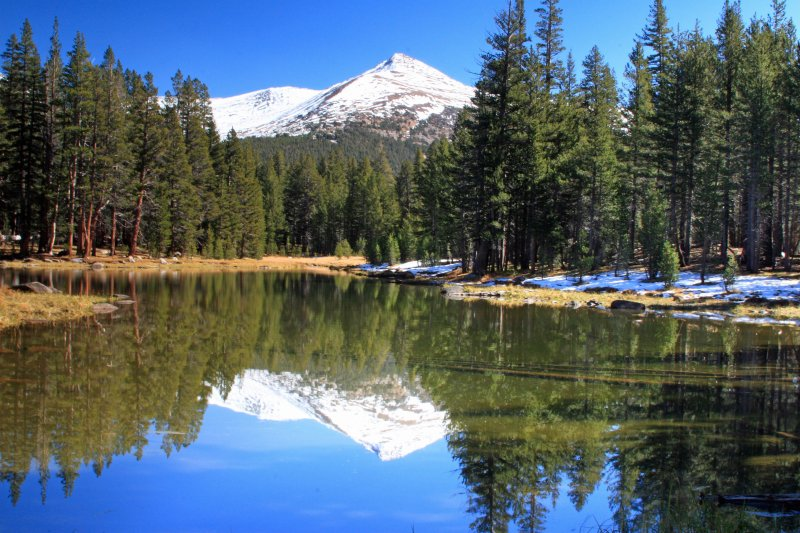Mt. Gibbs reflected on a small lake near Tiaga Pass in Yosemite