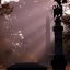 "Cincinnati - Spring Grove Cemetery & Arboretum ""Shower of Light on Section 22"""