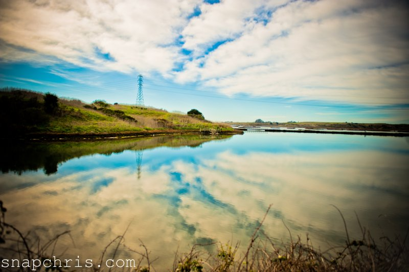 Reflections on  a coastal waterway