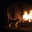 Cat and fire