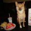 taro shiba's in-n-out advertisement #9
