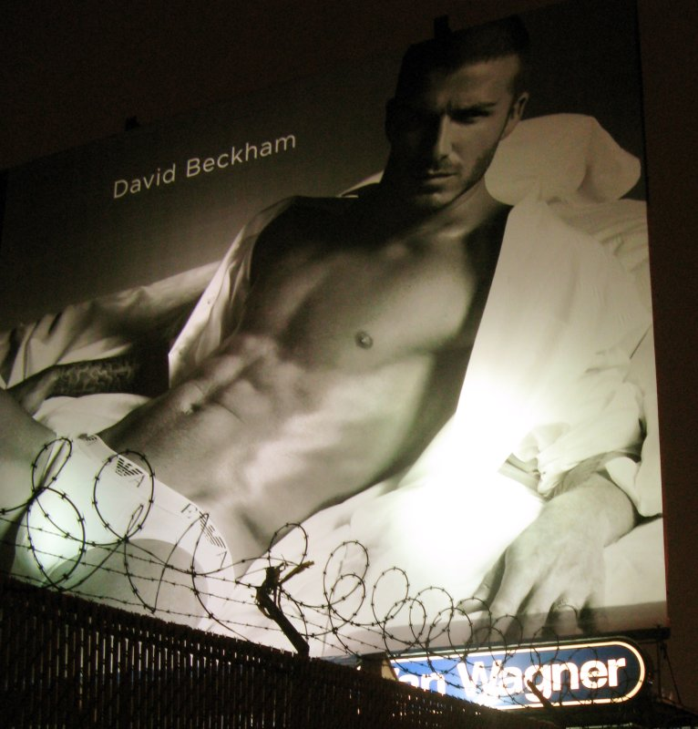 barbed wire bulge with beckham