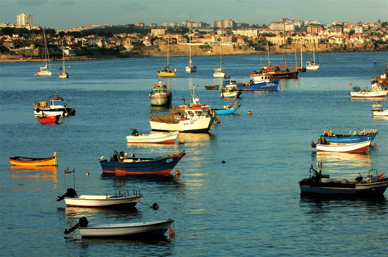 The sea and the fishing boats