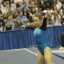 UCLA Bruins Women's Gymnastics - 1097