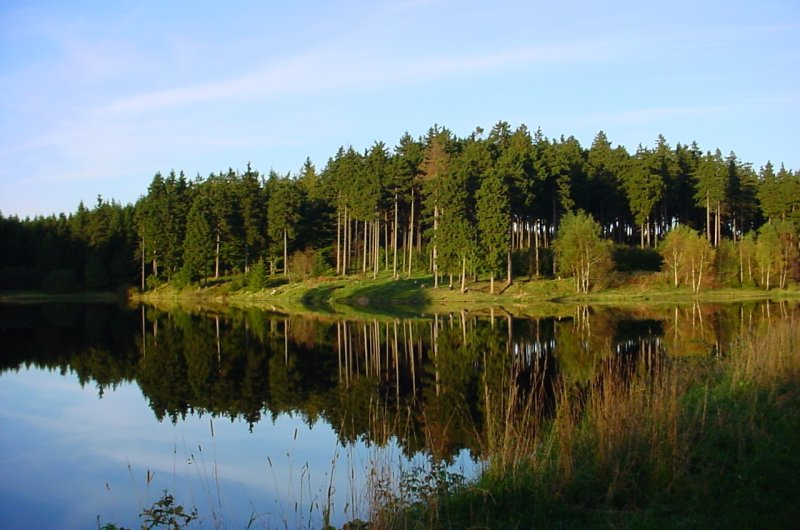 Langer Teich bei Clausthal