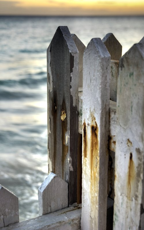Fence by the sea, Barbados